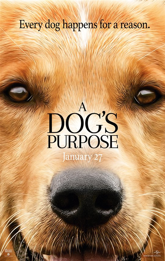 [A Dog's Purpose poster]