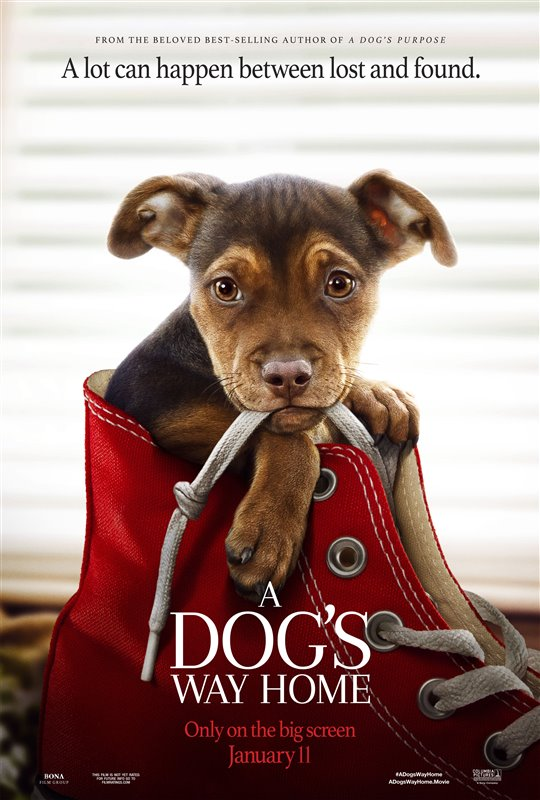 [A Dog's Way Home poster]